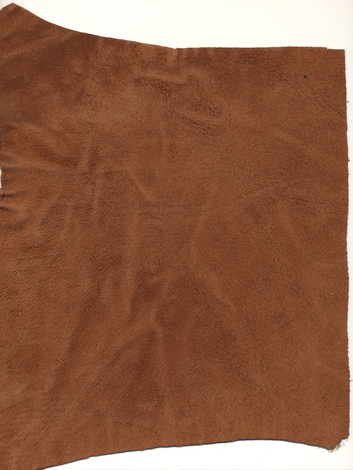 fzm-leather-texture-18